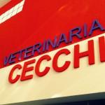 VETERINARIA_03